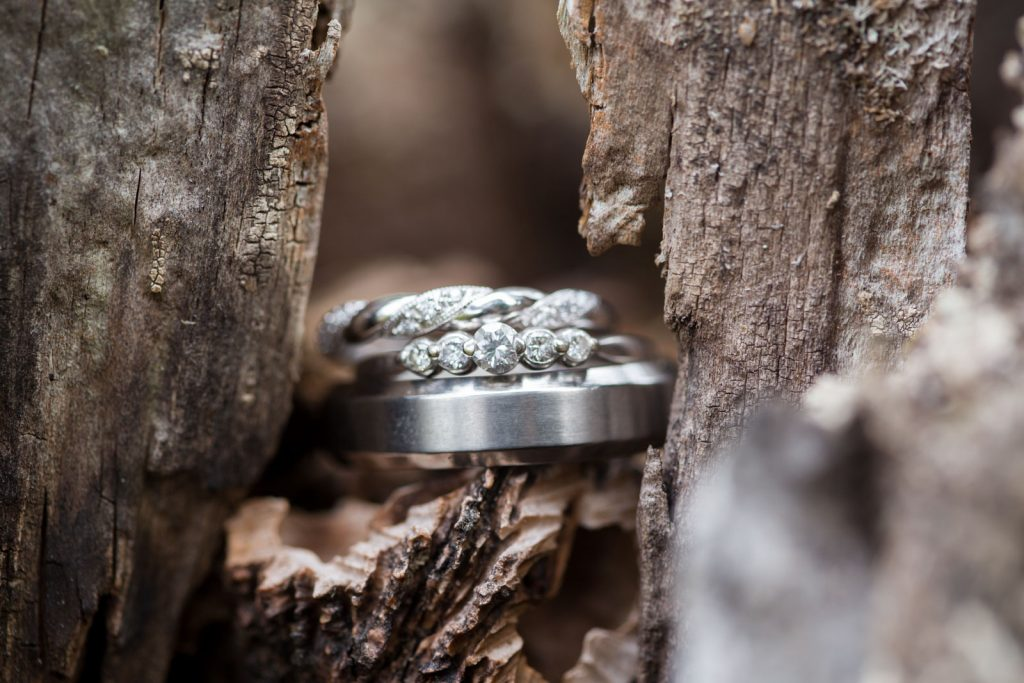 Wedding Band details , for an intimate backyard wedding